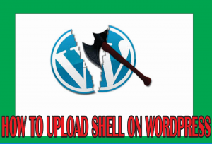 how to upload shell on wordpress private dorks